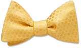 Andromeda Lemon - bow ties