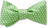 andromeda-lime-pet-bow-tie