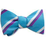 Aquinara - bow ties
