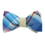 Ashley bow ties