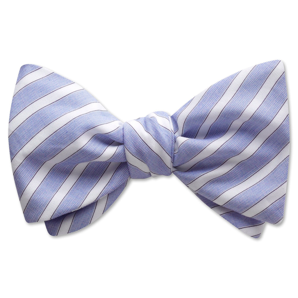 Aspect Blue - bow ties