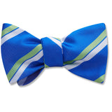 bellplaine-pet-bow-tie