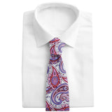 Barshaw Silver - Neckties