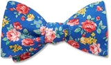 Chippenham - bow ties