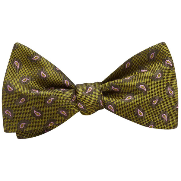 Cypress - bow ties