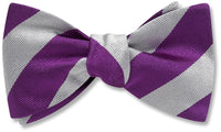 Collegiate Purple And Silver - bow ties