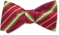 Framboise - bow ties
