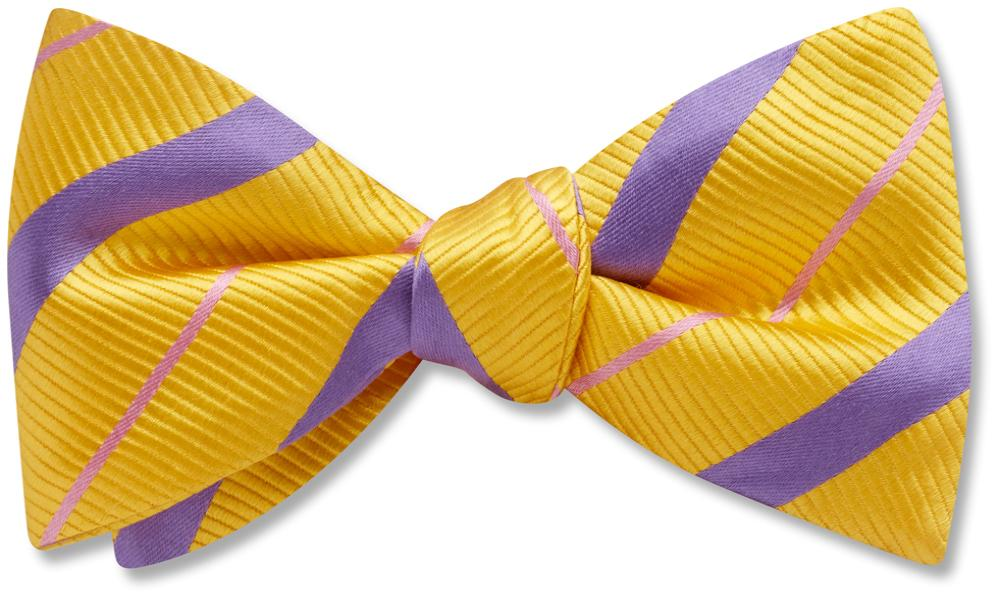 Forsyth - Kids' Bow Ties