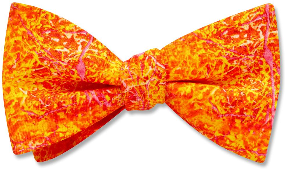 Genomics - Kids' Bow Ties