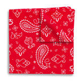 Hankie Red - Pocket Squares