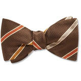 java-valley-pet-bow-tie