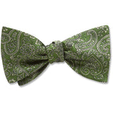 Pembroke Olive - bow ties