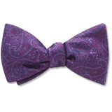 pembroke-plum-pet-bow-tie
