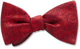 Pembroke Persimmon - bow ties
