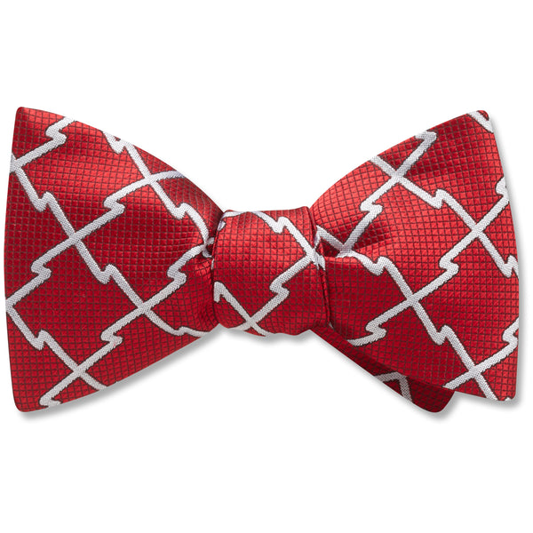 Rotegg Boys' Bow Ties