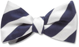 Scholastic Blue/White - bow ties