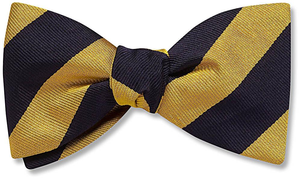 Science - scholastic bow ties
