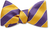 Scholastic Purple/Gold - bow ties