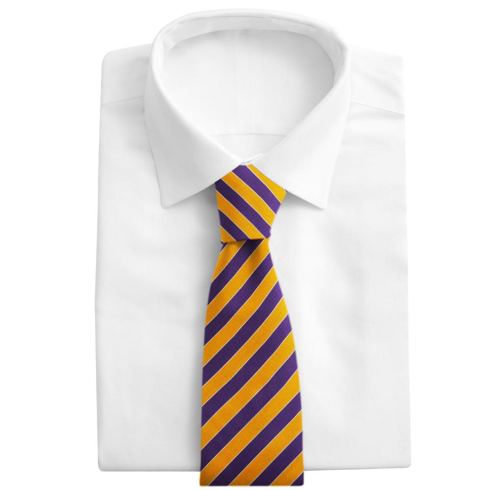 Scholastic Purple/Gold - Neckties