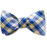 Surfside bow ties