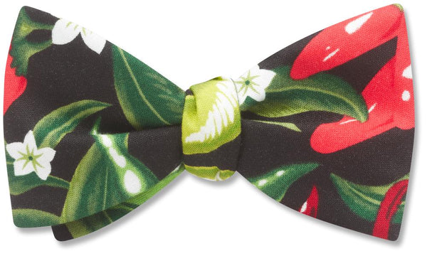 Salsa - bow ties