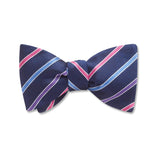 Winter Night Trail Kids' Bow Ties