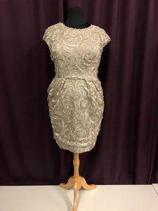 Alex Evenings Size 14 Silver Lace NEW Formal Dress