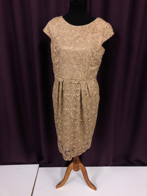 Alex Evenings Size 14 Tan Lace NEW Formal Dress