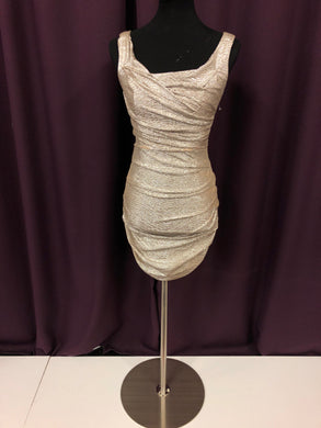 Express Size 0 Silver Rushing  Formal Dress