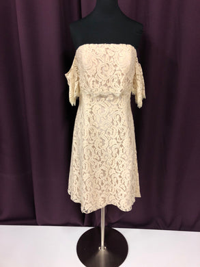 Jasmine Size 0 Ivory Lace Short Formal Dress
