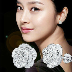 Exquisite 1Pair Women Earrings Ear Stud Jewelry - Cozzoo