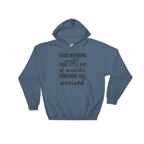 Good Morning World! Your Little Ray Of Sarcastic Sunshine Has Arrived - Hoodie Sweatshirt Sweater - Cozzoo