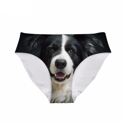 Border Collie Dog Animal - Women's Underwear Panties - Cozzoo