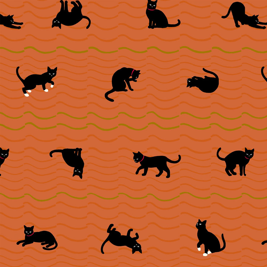 Neko IV - Cats in Orange