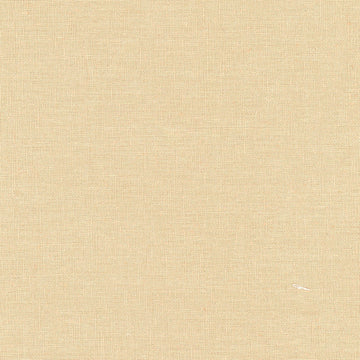 Tayutou Solid Beige | Canvas