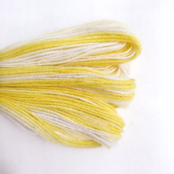 Natural Dyed Embroidery Thread - Color M3