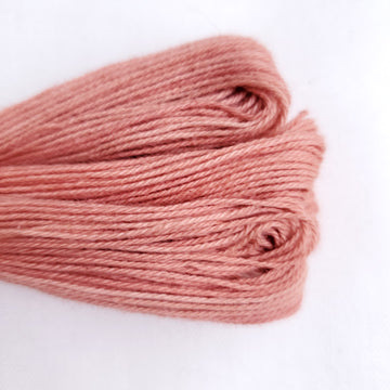 Natural Dyed Embroidery Thread - Color R5