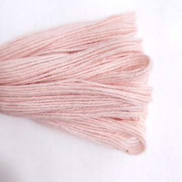 Natural Dyed Embroidery Thread - Color R7
