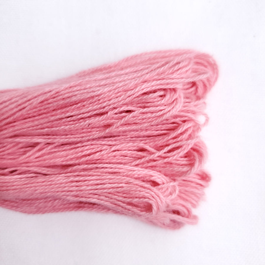 Natural Dyed Embroidery Thread - Color R9