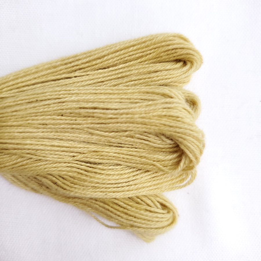 Natural Dyed Embroidery Thread - Color Y8