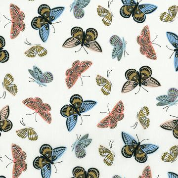 English Garden - Monarch in Cream Metallic | Cotton Lawn