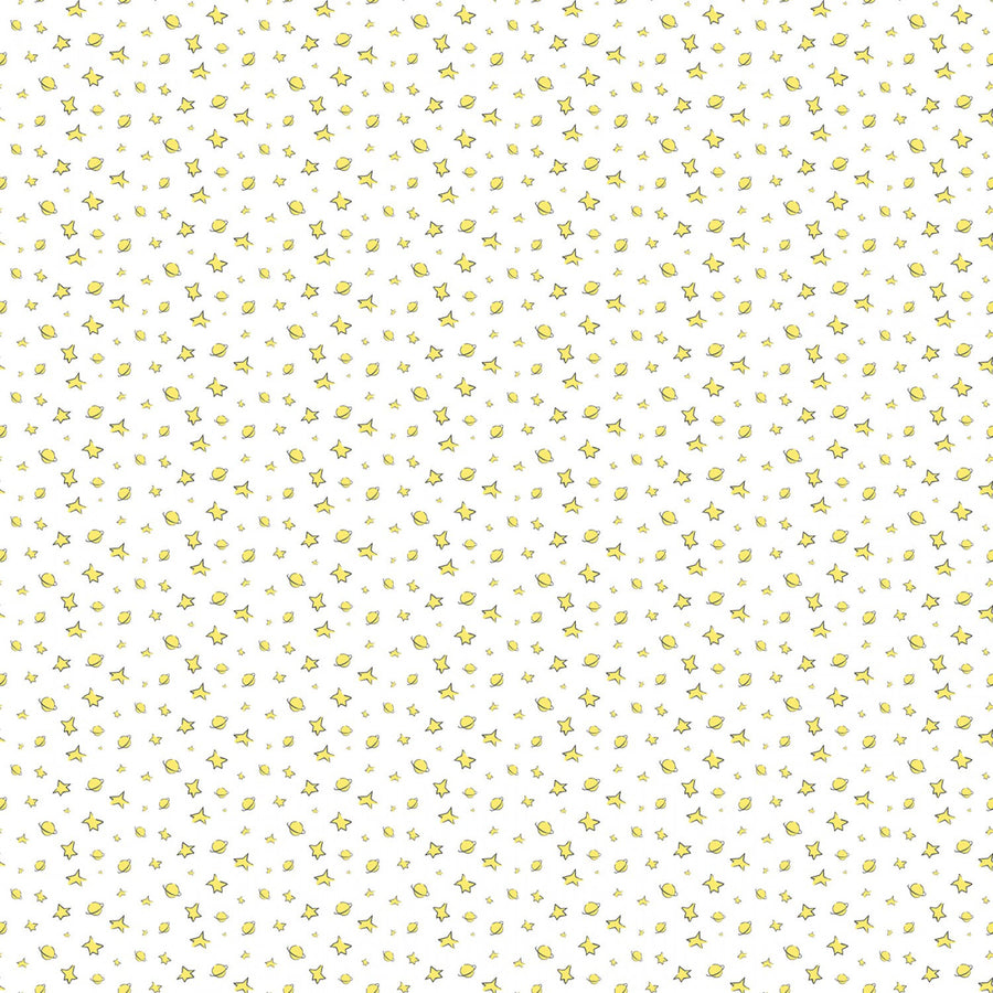 Little Prince Fabric