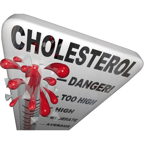 What to do When You Have High Cholesterol