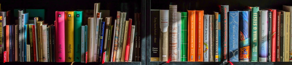 Campsie Books | Book Shelf