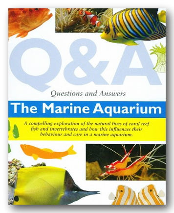 Dr Ashley Ward - Q & A - The Marine Aquarium (2nd Hand Hardback) | Campsie Books
