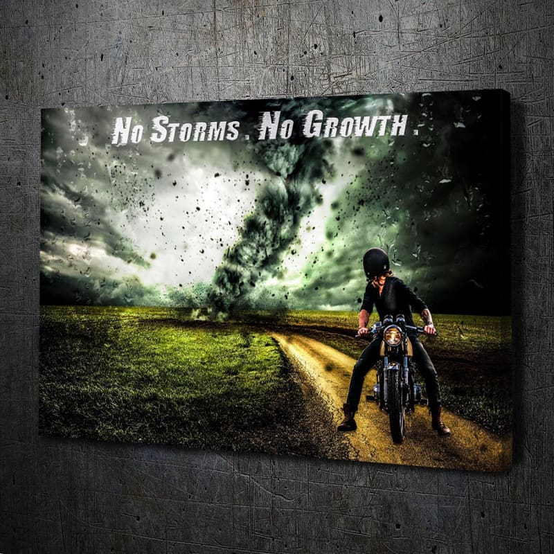 No Storms No Growth - Artwork Addict