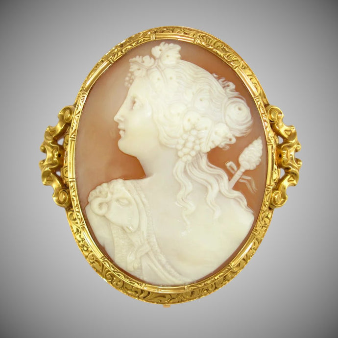 Antique French 18K gold hand carved bull's mouth shell cameo brooch pin