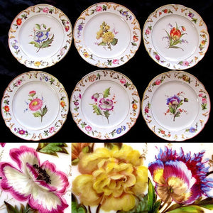 French Paris Porcelain hand painted floral plates