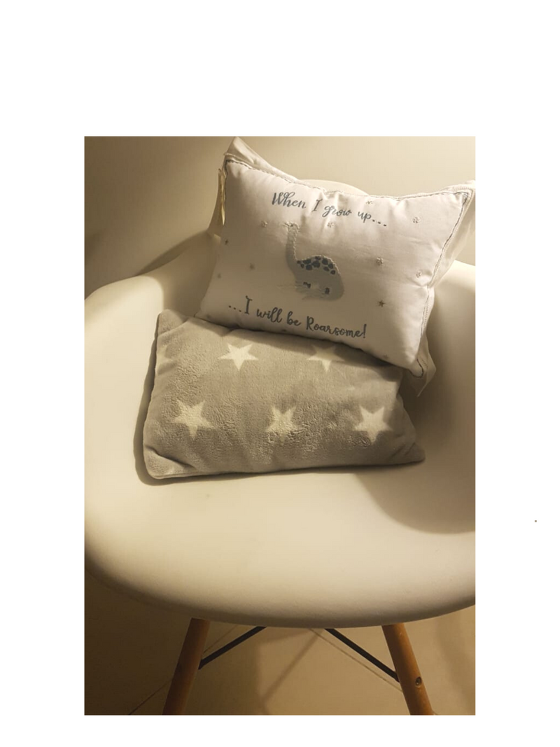 2 Almohadones Decorativos Kids
