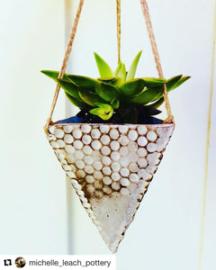 Sleek Pyramid Hanging Succulent Planters